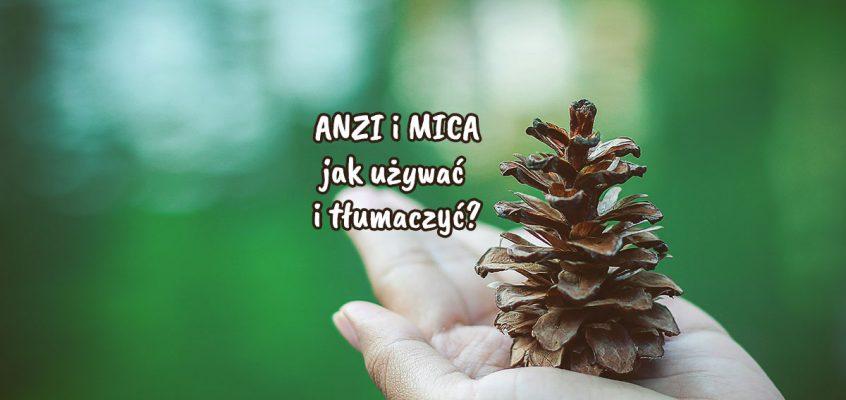 MICA iANZI – jak używać itłumaczyć?