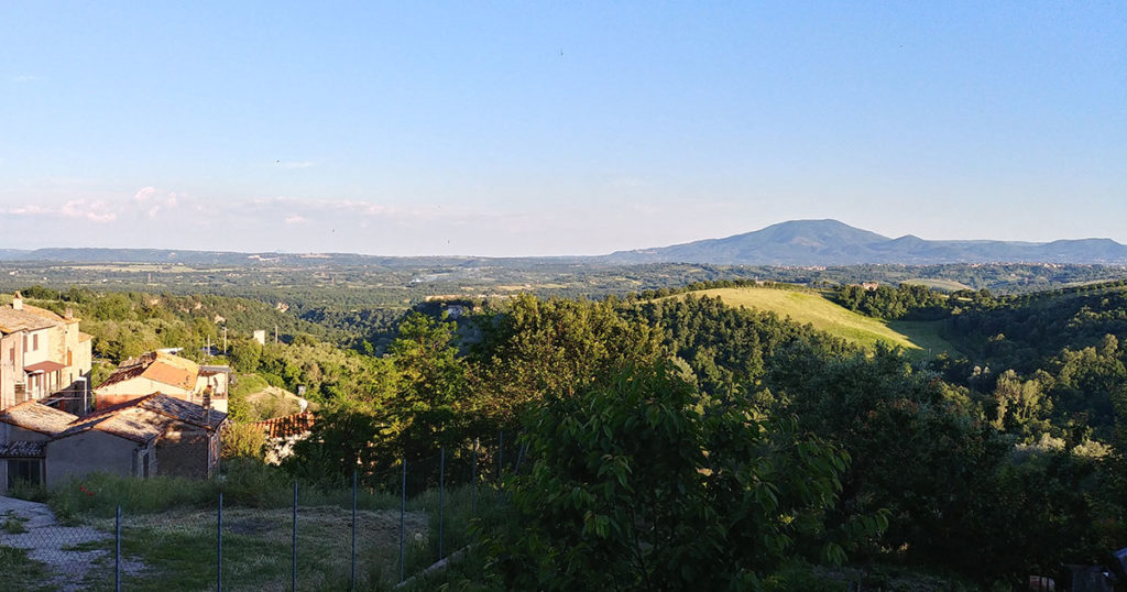 panorama wokół miasta