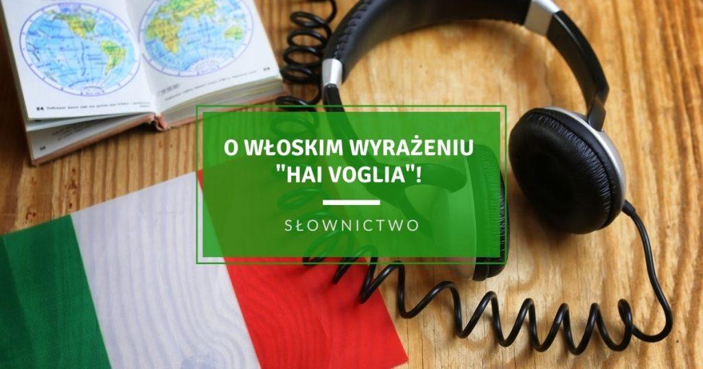 O włoskim wyrażeniu Hai voglia!